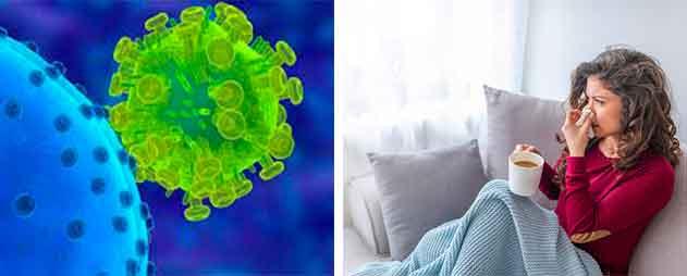 evitar-el-virus