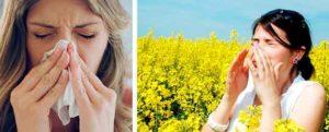 humidificador-para-la-alergia