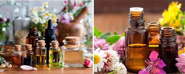 Beneficios y propiedades de los Aceites Esenciales - 【Guía ...